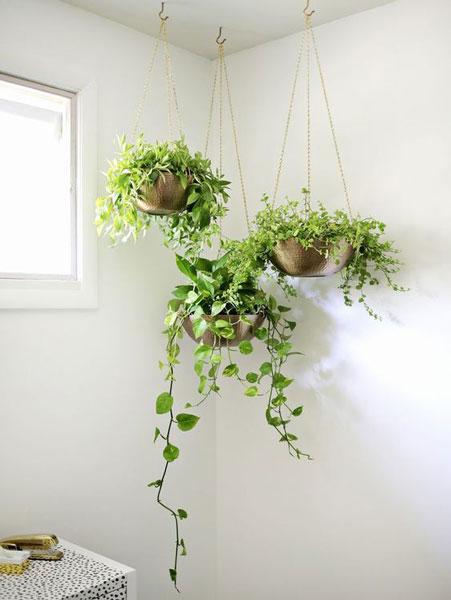 fower in home - 8 روش جذاب برای استفاده از گل در محیط داخل خانه