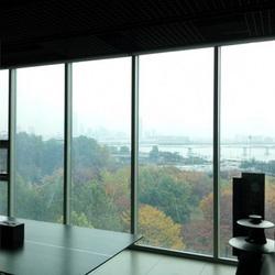 مواد هوشمند شیشه الکتروکرومیک