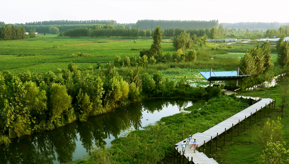 landscape ahamiyat tarahi4 - ۱۰ دلیل بر اهمیت طراحی لنداسکیپ