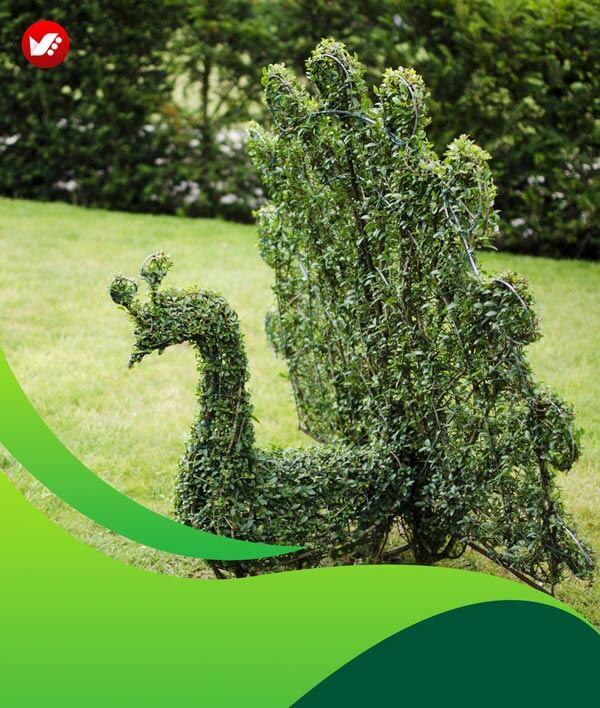 lanscape design 05 - طراحی لند اسکیپ برای باغ و فضاهای سبز مسکونی