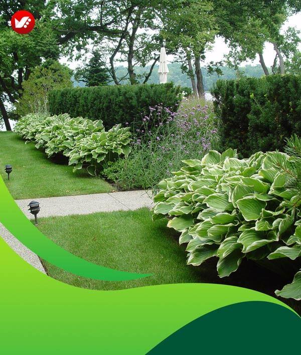 lanscape design 135 - طراحی لند اسکیپ برای باغ و فضاهای سبز مسکونی