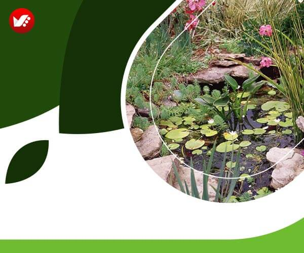 landscape design 07 - طراحی لنداسکیپ برای باغ و فضاهای سبز مسکونی