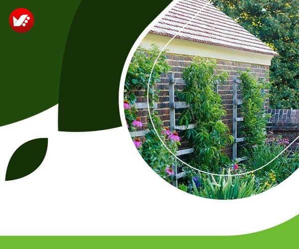 landscape design 36 - طراحی لنداسکیپ برای باغ و فضاهای سبز مسکونی