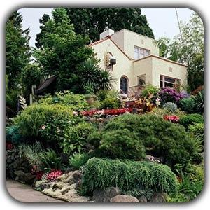 طراحی لنداسکیپ برای باغ